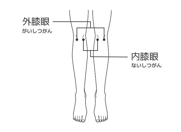 の 裏 痛み 膝